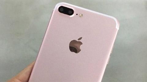 Iphone 7 Plus Phiên Bản Màu Vàng Hồng Lộ ảnh Thực Tế