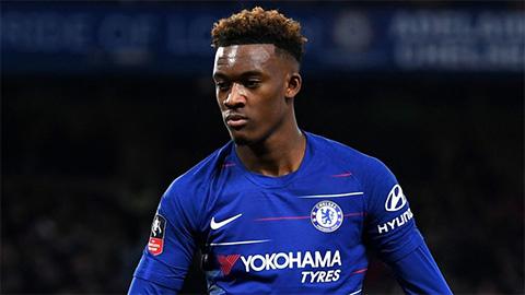 Chelsea giữ chân Odoi, tìm người thay Fabregas