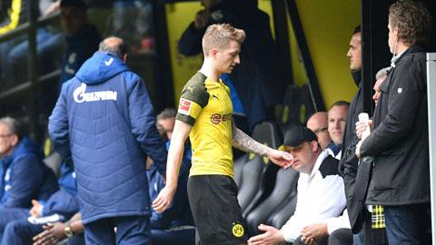 Dortmund mất Reus và Wolf vì án treo giò