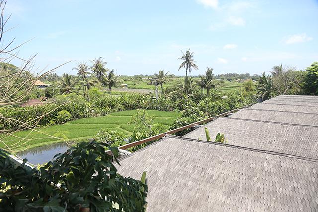 Nhìn từ hành lang khách sạn, thiên nhiên xung quanh hoang dã, tạo cảnh thanh bình