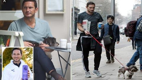 Lampard dắt chó di dạo để… cầu may
