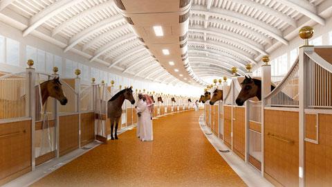 Al Shaqab, kinh đô Hollywood của... ngựa