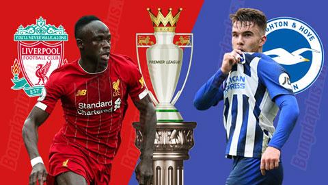 Nhận định bóng đá Liverpool vs Brighton, 22h00 ngày 30/11: Cản sao nổi Liverpool