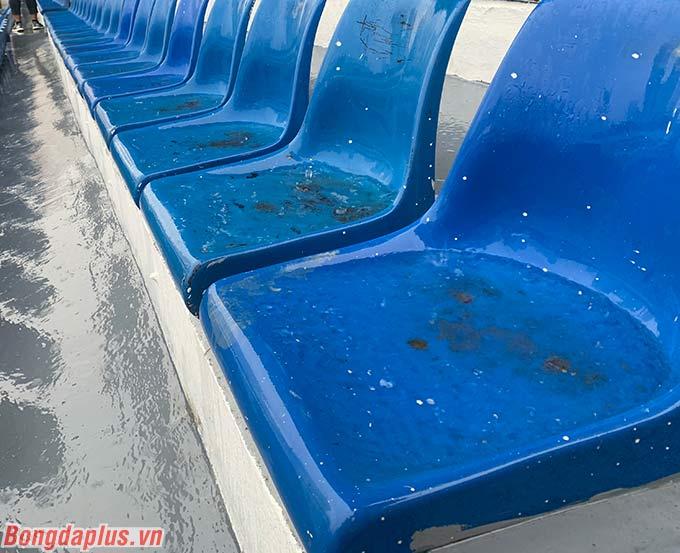 Ghế ngồi trên khán đài cũng trở thành vũng nước mưa.