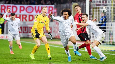 Joshua Zirkzee, người hùng Bayern từ trên trời rơi xuống