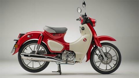 Honda Super Cub C125 2020 giá ngang ngửa Honda SH, khiến fan 'suy sụp'