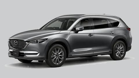Đối thủ của Hyundai Santa Fe, Toyota Fortuner, Ford Everest giảm giá 'cực sốc' tại Việt Nam