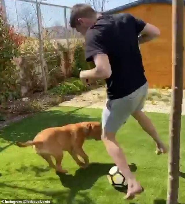 Tiền vệ Fede Valverde (Real Madrid) thoải mái đá bóng với chó