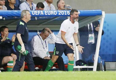Trợ lý ngôn ngữ cho Roy Keane là công việc rất khó nhọc