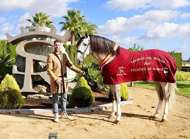 Ramos và chú ngựa nổi tiếng của mình