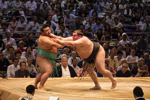 Để trở thành võ sỹ chuyên nghiệp, các sumo đã phải trả cái giá quá đắt cho chính cuộc sống của mình