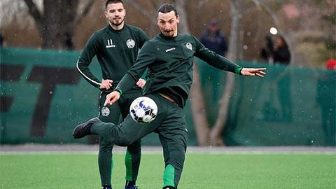 Ibrahimovic có thể sớm giải nghệ vì chấn thương