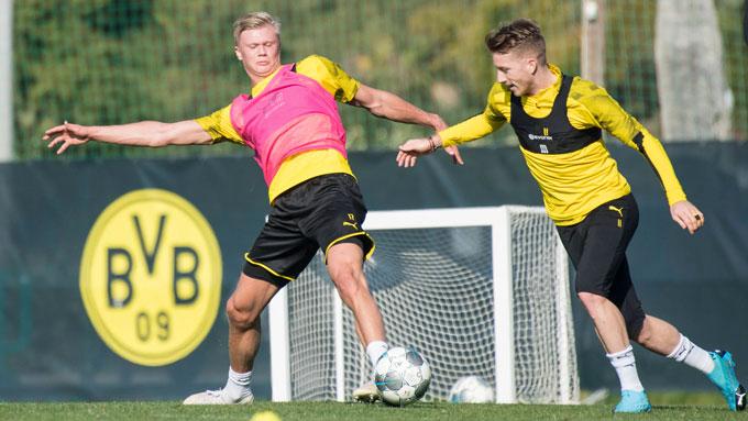 Haaland và Reus trở lại tập luyện
