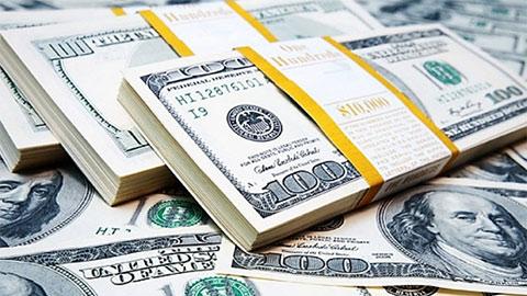 Tỷ giá USD hôm nay 16/7: Đô la Mỹ lao dốc không phanh