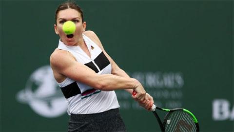 ĐKVĐ Wimbledon có thể vắng mặt ở giải đất nện Palermo Open