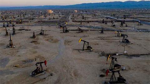 Giá xăng dầu hôm nay 30/7: Dầu thô tăng trở lại khi hàng tồn kho của Mỹ giảm