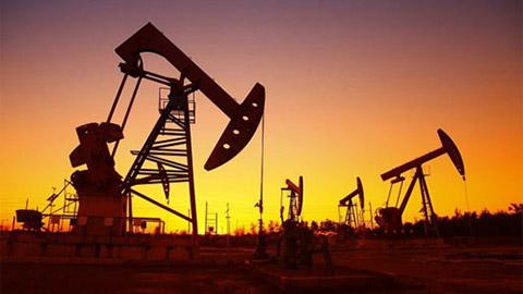Giá dầu hôm nay 1/8: Quay đầu tăng từ mức thấp nhất 3 năm