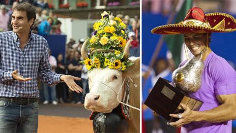Độc và lạ trong tennis: Federer hai lần nhận bò, Nadal ẵm hồ lô bạc