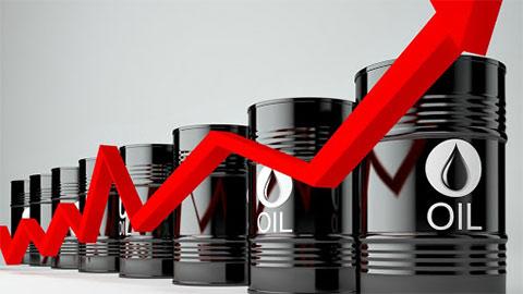 Giá xăng dầu hôm nay 7/8: Dầu thô tiếp tục hồi phục nhẹ - xs chủ nhật