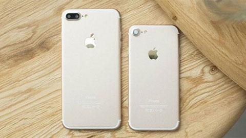 iPhone 7, iPhone 8 Plus, iPhone XS Max, iPhone 11... giảm giá mạnh tại VN, khiến fan thèm khát