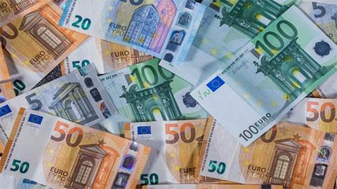 Tỷ giá euro hôm nay 13/8: Đồng loạt tăng nhẹ