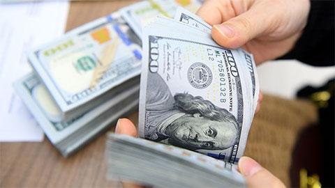 Tỷ giá USD hôm nay 13/8: Đô la Mỹ lại mất giá