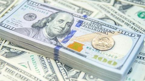 Tỷ giá USD hôm nay 14/8: Đô la Mỹ mất giá so với các đồng tiền chủ chốt khác