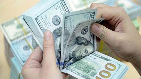 Tỷ giá USD hôm nay 11/9: Ổn định trên thị trường quốc tế