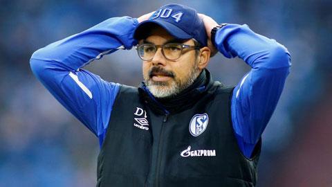 Wagner sắp bị Schalke sa thải