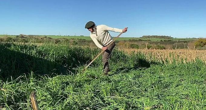 Cavani làm nông ở quê nhà Uruguay