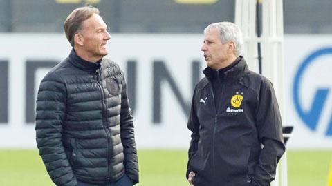Dortmund chuẩn bị gia hạn với HLV Favre