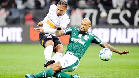 05h00 ngày 19/1: Palmeiras vs Corinthians